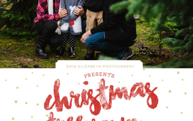 Christmas Mini Session 2018
